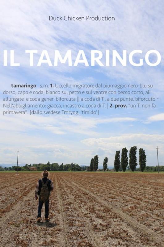 Festival films – Il tamaringo – Stefano Valentini